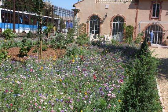 Réalisation d'un jardin